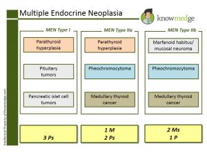 ABIM Internal Medicine Board Exam Review - Multiple Endocrine Neoplasia