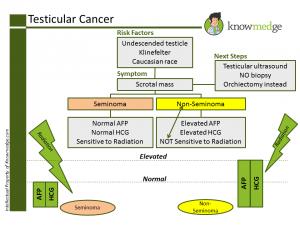 ABIM Board Exam Maintenance of Certification Review - Testicular Cancer