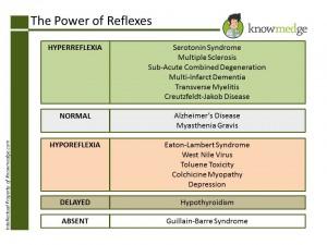 ABIM NBME Internal Medicine Board Concept - Reflexes
