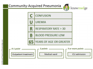 ABIM Board Review / NBME Shelf Exam Questions - Community Acquired Pneumonia