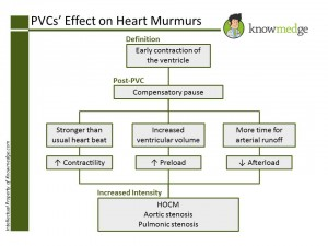 Cardiology review for the Internal Medicine Boards - PVCs effect on Heart Murmurs