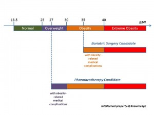 General Internal Medicine Review - Obsesity and BMI