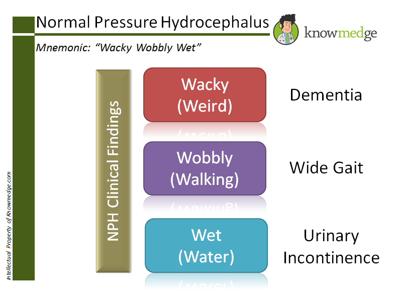 "Medical Mnemonics for Normal Pressure Hydrocephalus is ""Wacky, Wobbly, Wet"""
