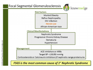 Internal Medicine Focal Segmental Glomerulosclerosis