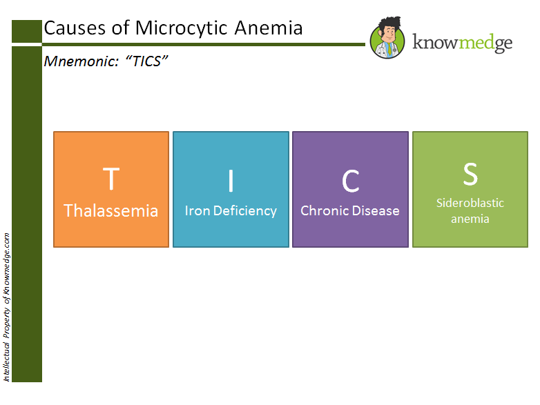"Medical Mnemonics for Internal Medicine Board Review Concept - Microcytic Anemia ""TICS"""