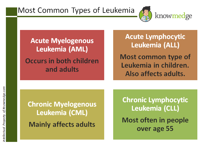 leukemia adult Subtypes of myelogenous