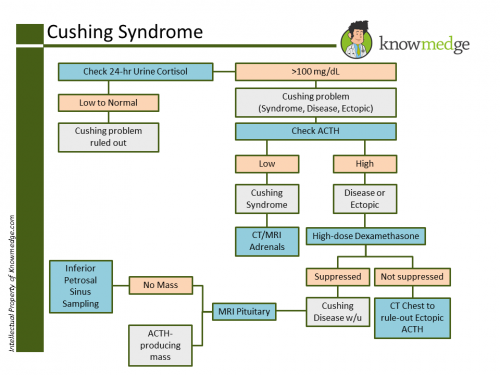 Internal Medicine Cushing's Syndrome