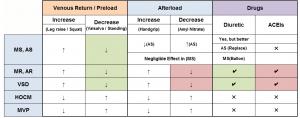 ABIM Exam Board Review: Cardiology Murmurs