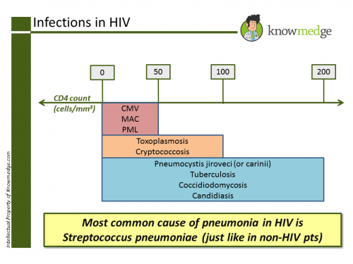 Internal Medicine Infections in HIV