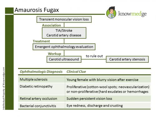 Internal Medicine Amaurosis Fugax