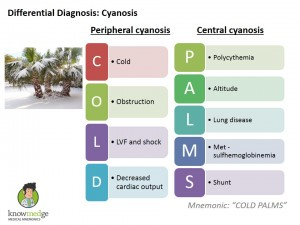Medical-Mnemonics-Cold-Palms-Cynasosis