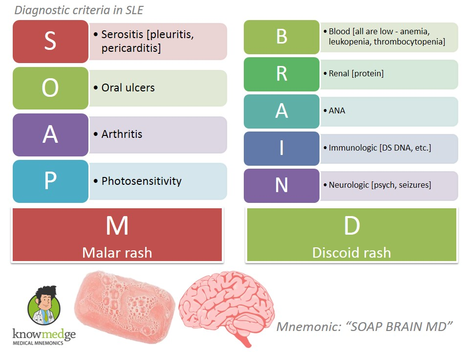 SLE Diagnostic Criteria - SOAP BRAIN MD