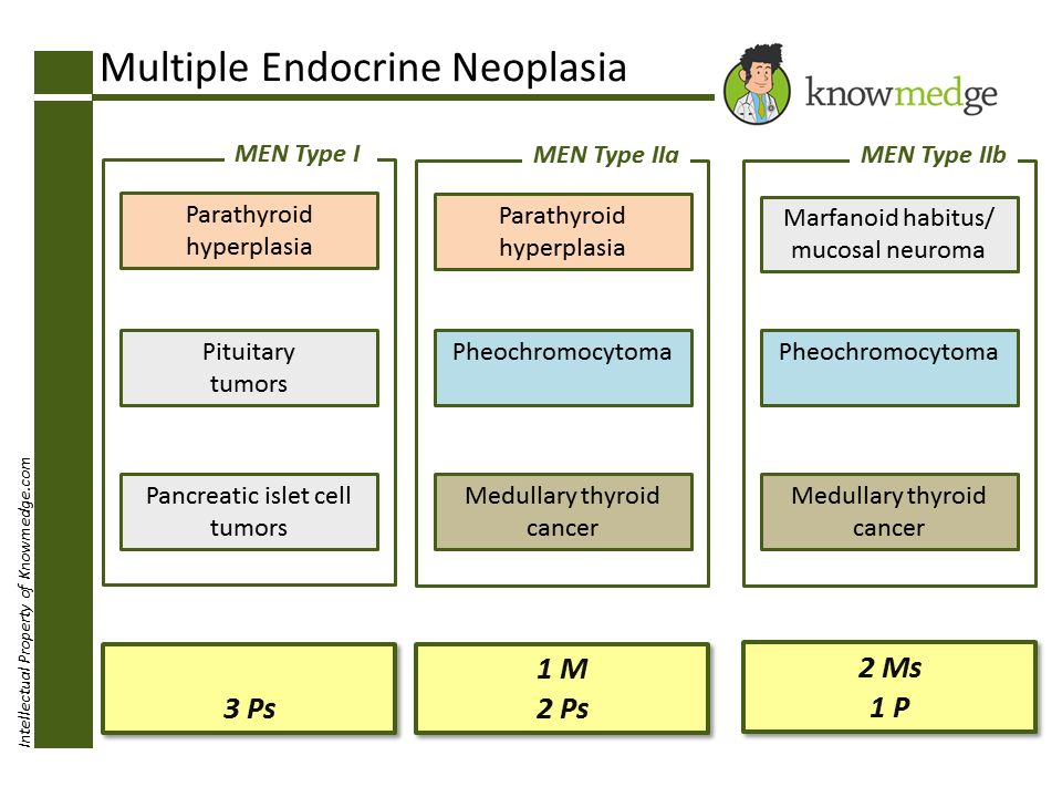 ABIM and PANCE Board Review: Multiple Endocrine Neoplasia - MEN Type III