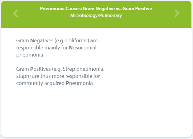 Pneumonia Causes Internal Medicine