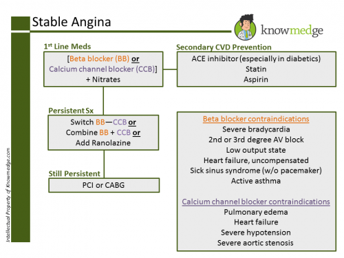 stable-angina-knowmedge-topic-refresher